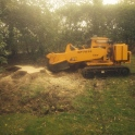 Stump Grinding, Rotherfield
